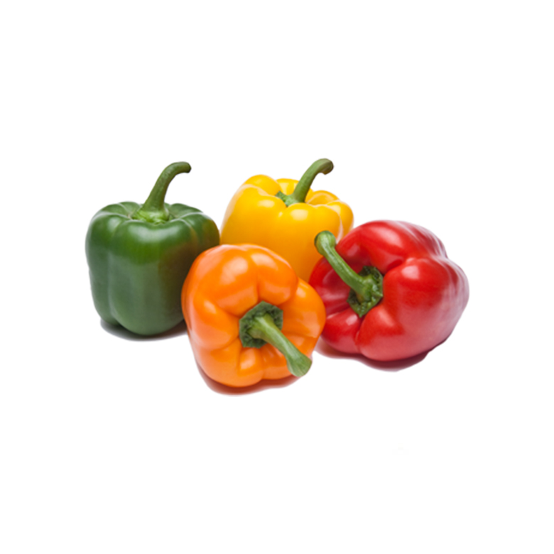 Coloured peppers h